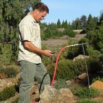 Donating time to help remove ground squirrels and gophers. Santa Cruz Arboretum.